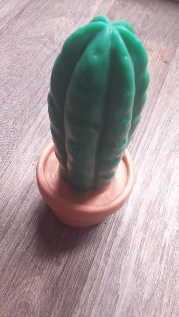 Primal Hardwere Pedro The Cactus Review Copyright © 2021 primal hardwere, llc. kinky kitten